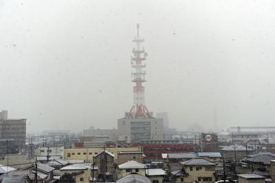 DSC_5365ーC1  雪が降りました