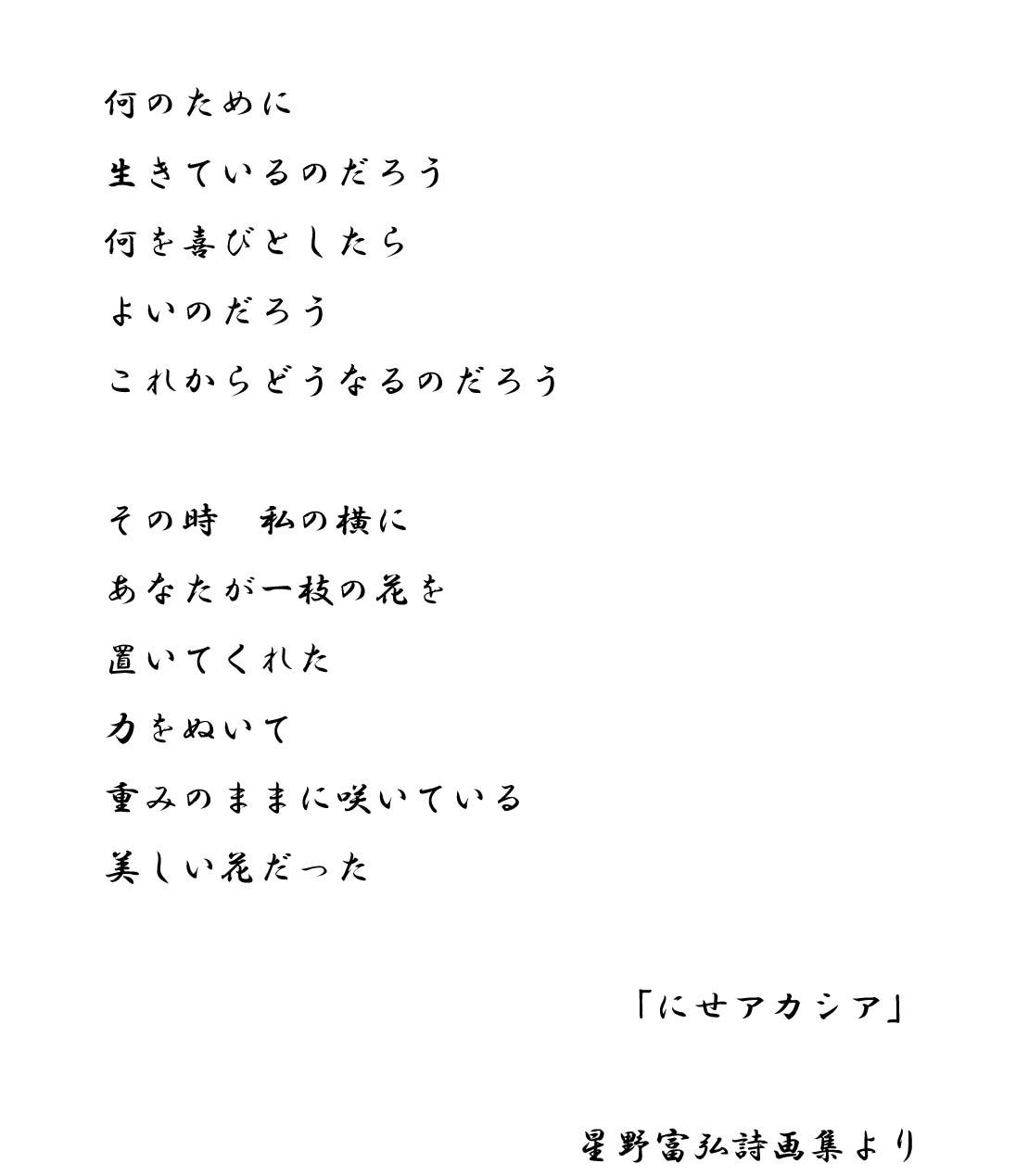 星野富弘の画像 p1_39