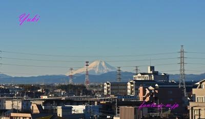 雪をかぶった富士山