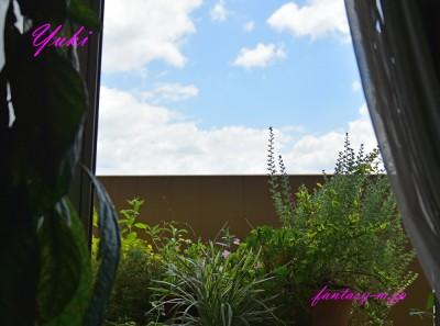 窓からの空